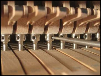 Capstan adjustment on a grand piano